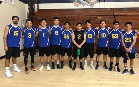 Boys' volleyball named PVL champions, again